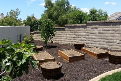 Other garden 3
