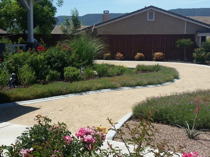 Front yard grass-free landscape