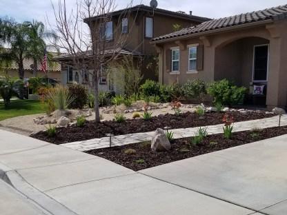 Arid style front yard landscape