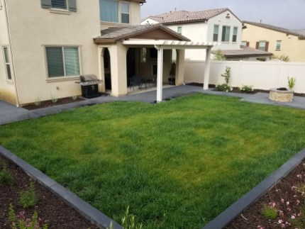 Backyard with patio cover, firepit, grass and concrete