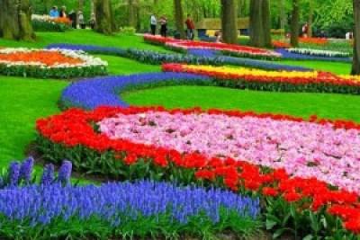 Beautiful Nusantara Flowers Park Indonesia