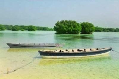 Paket wisata pulau Pari