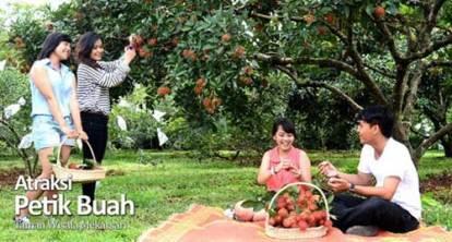 taman buah mekarsari cileungsi