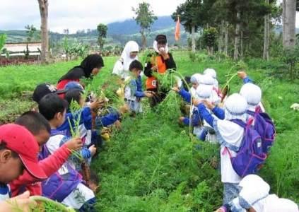 Little Farmers Bandung