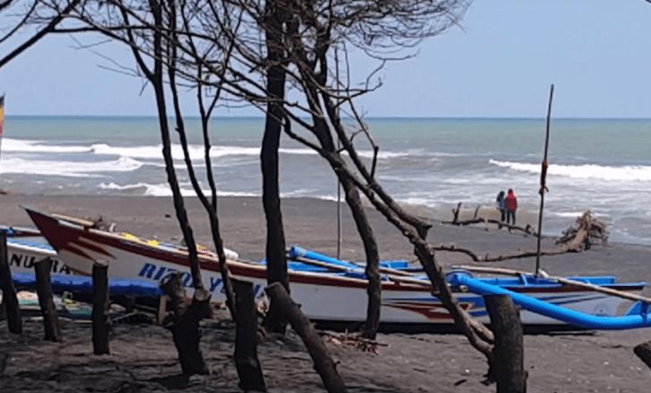 Tiket Masuk Pantai Baru Yogyakarta