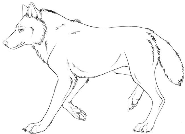 fox template animal templates