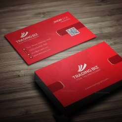 Sleek Stylish Business Card