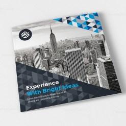 Canopus Corporate Tri-Fold Brochure Design Template