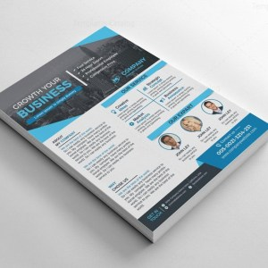 Business Flyers Design Template