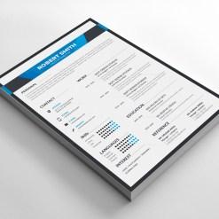 Border Resume Design