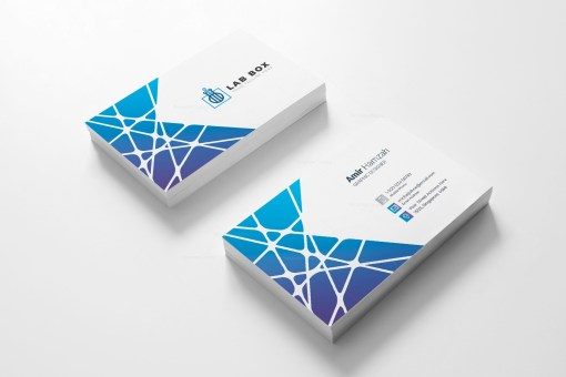 Elegant Visit Card Template