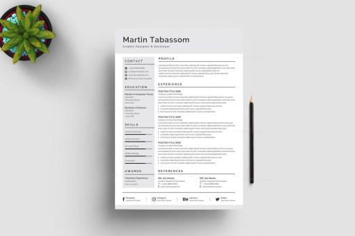 Grey CV Design Template