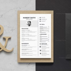 Sleek Vector Resume Template