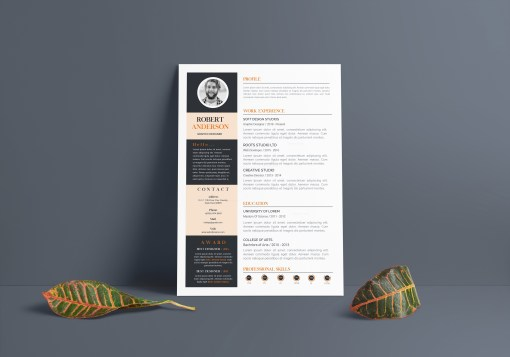 A4 Contemporary CV Template