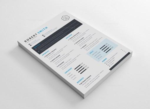 A4 Modern CV Template