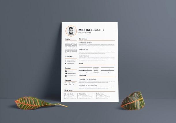 Standard Resume Template
