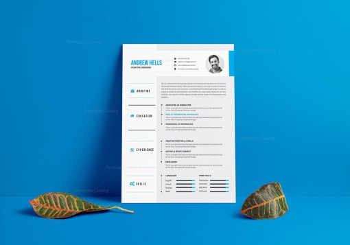 Vector Resume CV Template