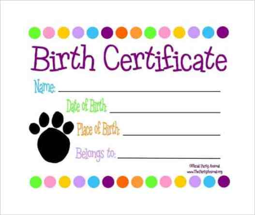 21 free birth certificate template word excel formats birth certificate sample 141 clip yelopaper Gallery