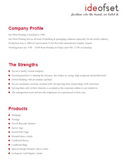 Company Profile Template Word download company profile template – Company Profile Template Word