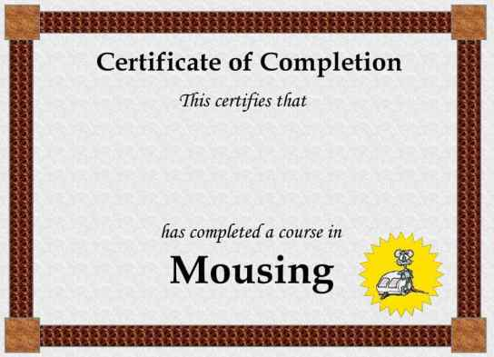 Free Certificate of Completion example 25.941