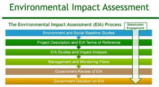 impact assessment example 119641