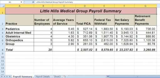 payroll summary report template