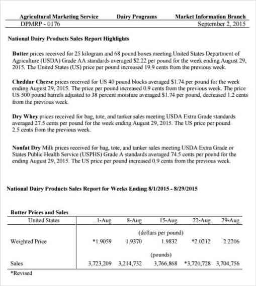 sales report sample 6.41