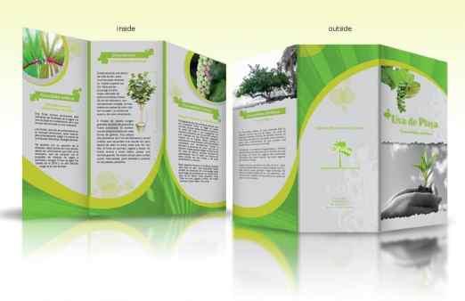 word brochure example 9741