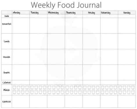 food journal sample 69461
