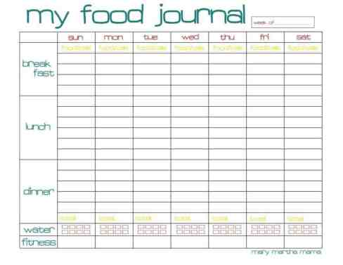 food journal sample 8461