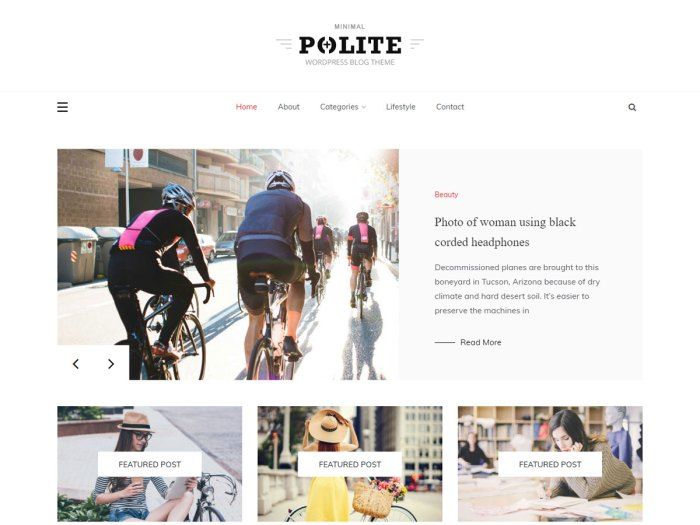 masonry WordPress theme polite