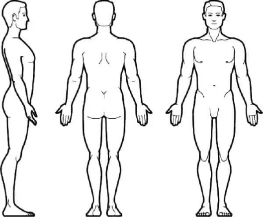 6 Human Body Outlines
