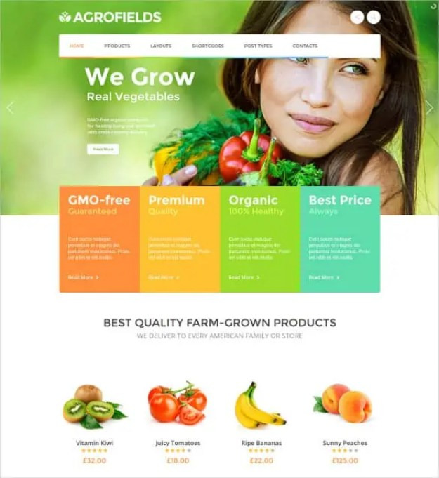 Online Grocery Shopping Website Templates 794