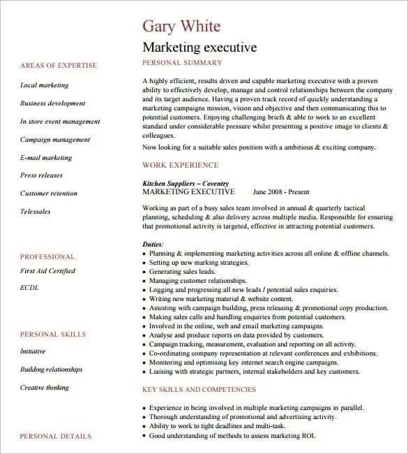 executive format resume templates