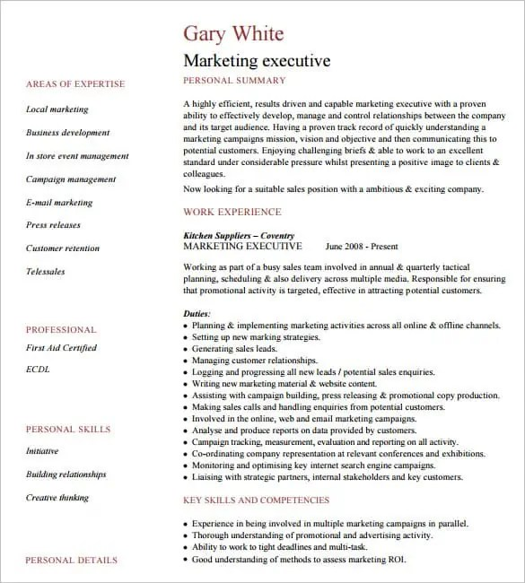 executive resume template word 365