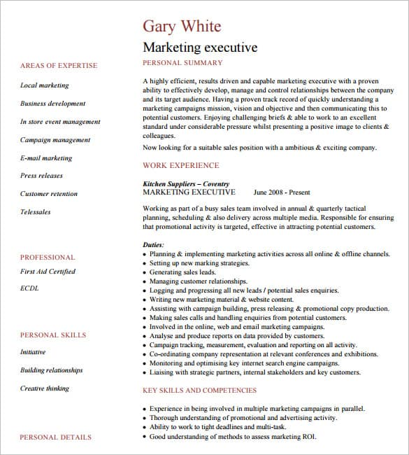 6+ Executive Resume Templates Word - Website, Wordpress, Blog