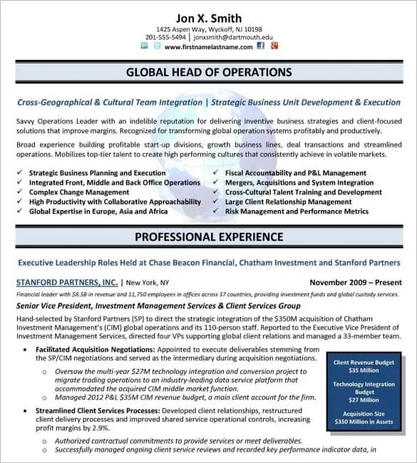 Executive Resume Templates Word  Website Wordpress Blog
