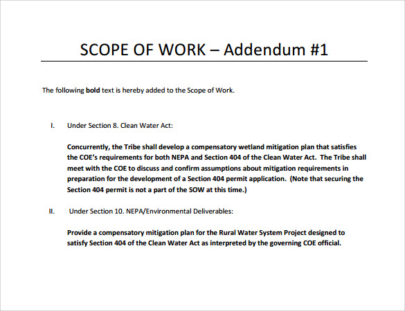 scope of work template 990