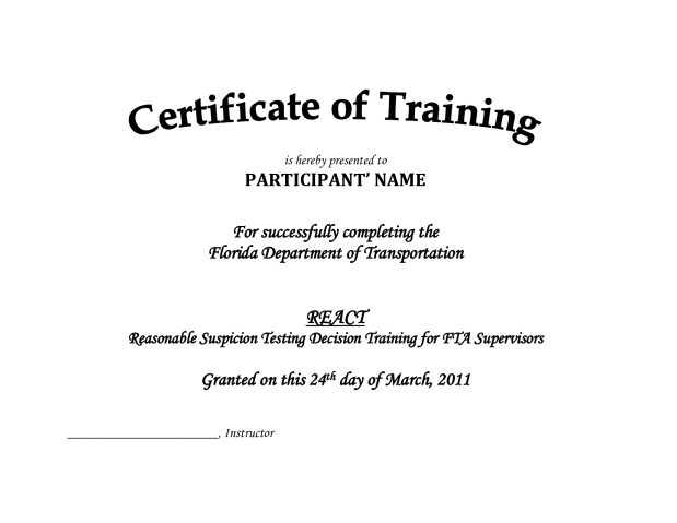 training certificate template 7941