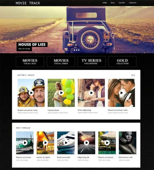 Cinema WordPress Themes 42