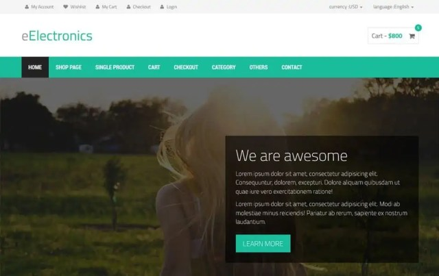 Ecommerce HTML5 Templates 52