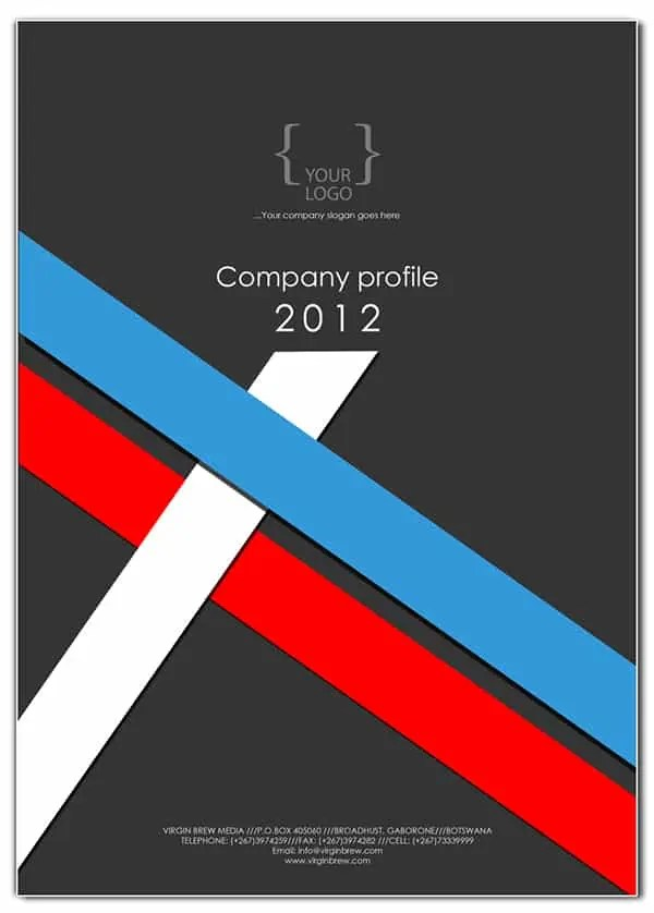 Company Profile Templates Word Excel Samples – Templates of Company Profiles