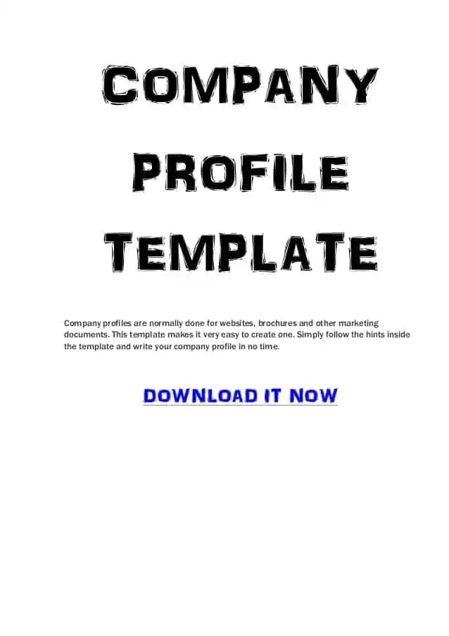 Company profile templates word excel samples for How to make a company profile template
