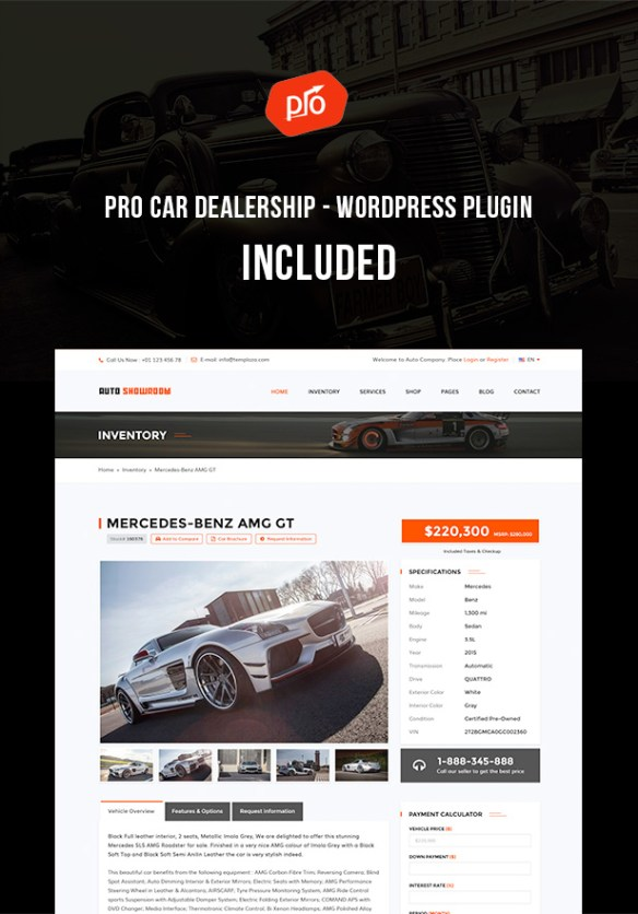 Pro Car Dealership