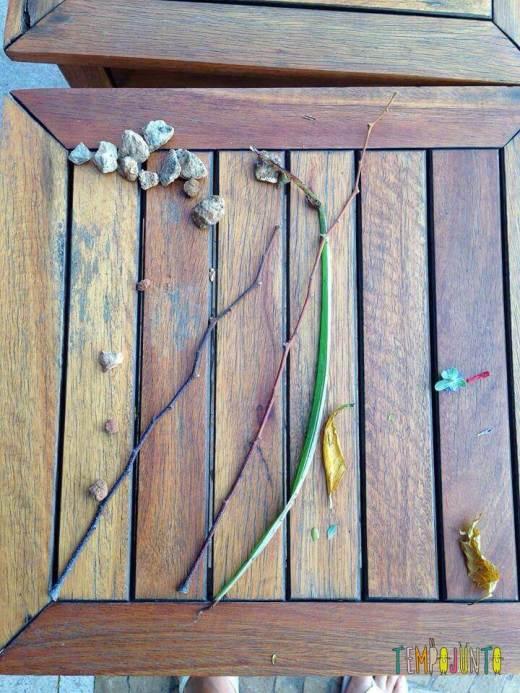 Essa mesa tem os resultados da caçada que eu e Carol fizemos no jardim aqui do prédio.
