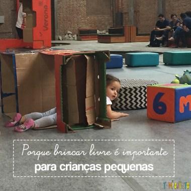 Por que brincar livre é importante para as crianças pequenas?