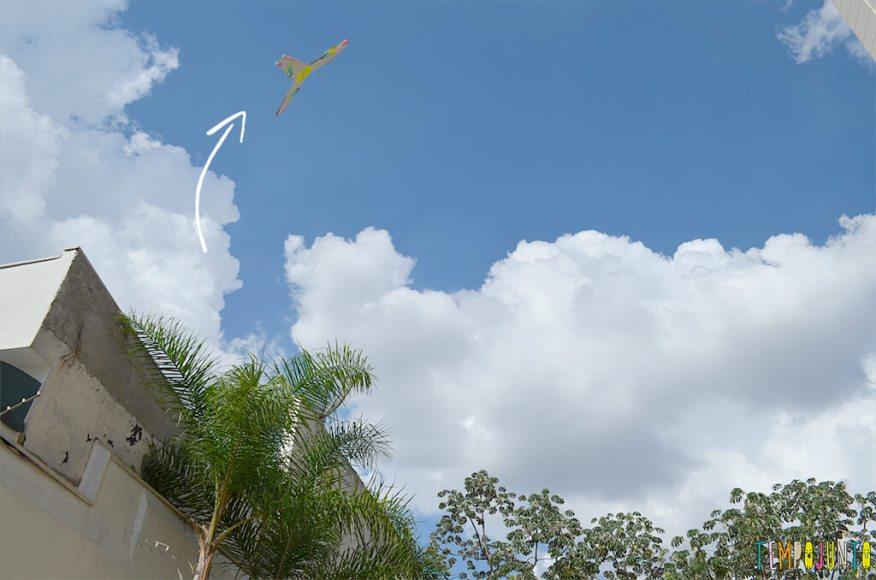 Boomerang - boomerang voando com setinha