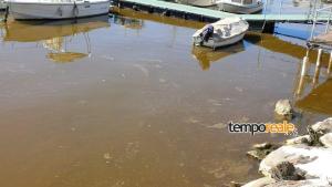 acqua sporca formia (3)