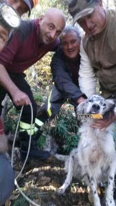 Tom, il cane salvato dai vigili del fuoco di Terracina