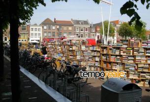 biblioteca all'aperto